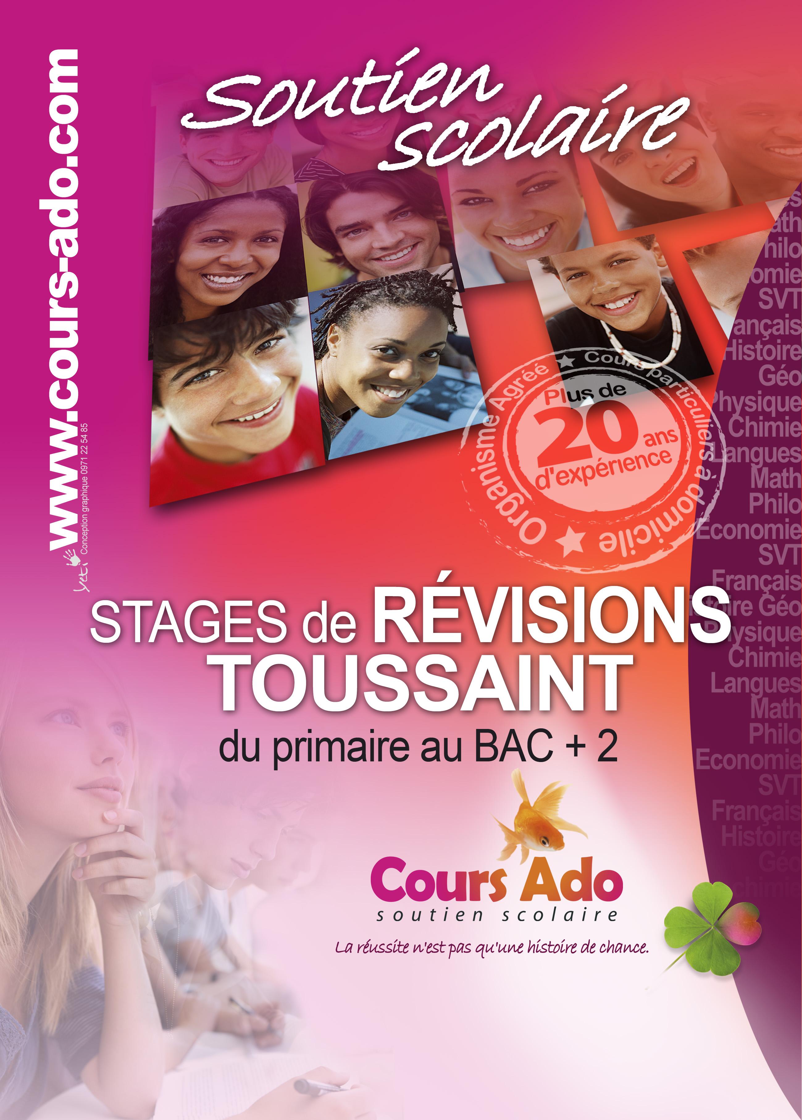 affiche stage de révisions de Toussaint