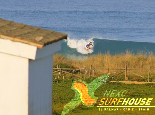 Nexo surfhouse